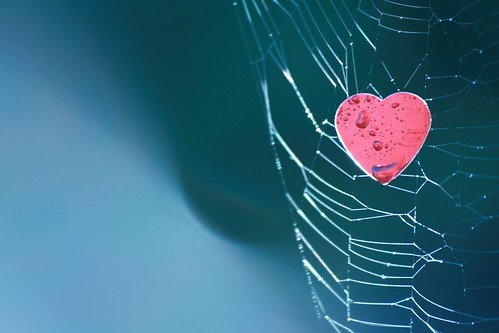 Whatever Captures The Heart … Consumes One's Entire Being!