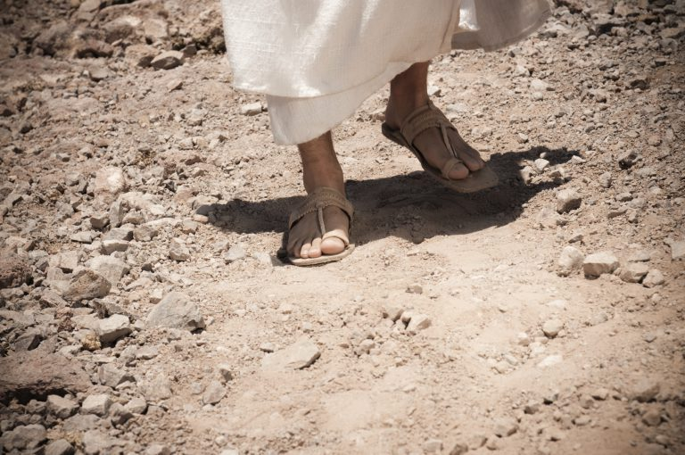 Staying In Step With Our Great Shepherd … And Living In The Fulness Of His Favor!